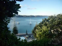 View : Oriental Bay by <b>Eva Kaprinay</b> ( a Panoramio image )