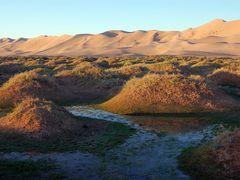 Khongoryn Els: amanecer. by <b>Javier Elcuaz</b> ( a Panoramio image )