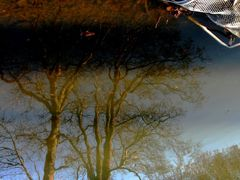 Reflection of life. Skanderborg. 2010 by <b>-HARMONSA-</b> ( a Panoramio image )