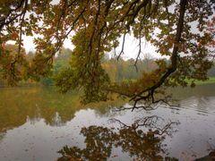 Autumn beauty by <b>Maksym Pola</b> ( a Panoramio image )