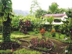 Jardim  Botanico de S.Tome - Sao Tome e Principe by <b>Mario:Portugal</b> ( a Panoramio image )