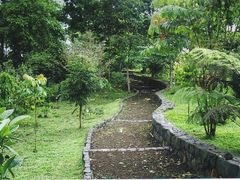 Jardim Botanico de S. Tome - Sao Tome e Principe by <b>Mario:Portugal</b> ( a Panoramio image )