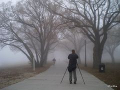 A foggy day in Hog Town....(in Sunnyside Park!)  by <b>Tomros</b> ( a Panoramio image )
