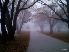 Misty and Mystical,  Sunnyside Beach Park by <b>Tomros</b> ( a Panoramio image )