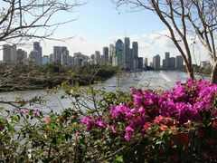 Brisbane River with bougainvillea by <b>Marilyn Whiteley</b> ( a Panoramio image )