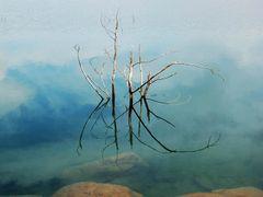 Sterkfontein Dam by <b>j. adamson</b> ( a Panoramio image )