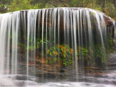 Weeping Rock Waterfall, Blue Mountains by <b>-Yury-</b> ( a Panoramio image )