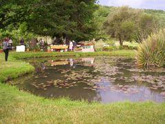 Fiesta de la cerveza 2010, exposicion de flores y plantas by <b>agroquin</b> ( a Panoramio image )
