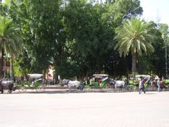 Marrakech, jardin Place Jaama El Fna by <b>elakramine</b> ( a Panoramio image )