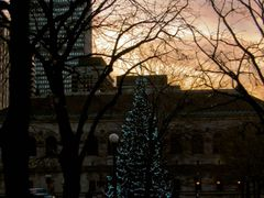Copley Square Christmas Tree, Boston Public Library and Prudenti by <b>Steven James</b> ( a Panoramio image )