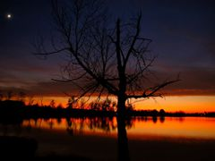 Dark Golden Sunset with the Moon 1 - Jacobson Park (Lexington, K by <b>Kalin Ranchev</b> ( a Panoramio image )