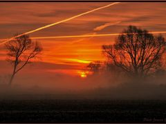 MY Contest DECEMBER 2010 - THE SUNRISE by <b>Arnika1</b> ( a Panoramio image )