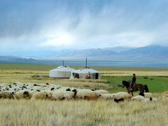 khuvsgul landscape by <b>Wind of Mongolia</b> ( a Panoramio image )