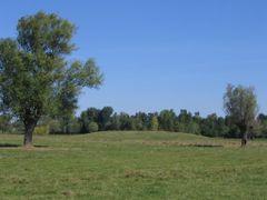 "Tatarasti de Jos ""Turesti"" Neolithic tell settlement  by <b>pavelcmirea</b> ( a Panoramio image )"