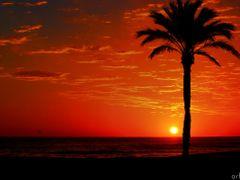 SONAR DESPIERTO  by <b>ZEUS74</b> ( a Panoramio image )