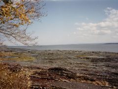 "le saint-Laurent sur l""?le d""Orl?ans, oct 1995 by <b>Pom-Panoramio? YES !</b> ( a Panoramio image )"