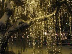 """Light Drops Keep Falling"" - Tivoli by Night, Copenhagen, Denmar by <b>Jan Sognnes</b> ( a Panoramio image )"