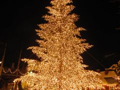 """""""Merry Christmas and Happy New Year 2011"""" - Tivoli by Night, Cop by <b>Jan Sognnes</b> ( a Panoramio image )"""
