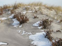 Margate Beach Dune by <b>Chris Sanfino</b> ( a Panoramio image )