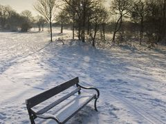 Winter Bench by <b>woody93</b> ( a Panoramio image )