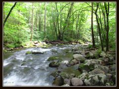 """The years go by, like stones under rushing water..we only know  by <b>Kyle Wolff</b> ( a Panoramio image )"