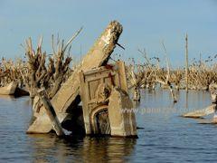 El Hoy de Epecuen by <b>eoraptor</b> ( a Panoramio image )