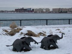 """Tembo"" by Derrick Stephan Hudson - Odette Sculpture Park, Winds by <b>Irene Kravchuk</b> ( a Panoramio image )"