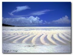"Zanzibar, drawings of the tide on the sand by <b>Giorgio D""Arrigo</b> ( a Panoramio image )"