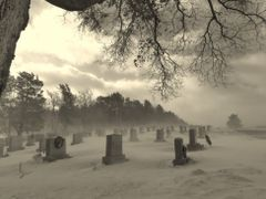 The Cold and the Dead by <b>BMZYGrace</b> ( a Panoramio image )