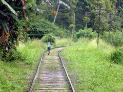 Transport par voie ferree by <b>Christian PERLOT</b> ( a Panoramio image )