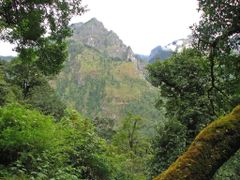 Mountain jungle by <b>volnat</b> ( a Panoramio image )