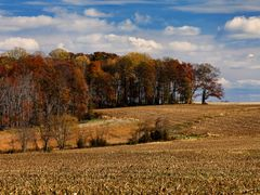 The Fields of Cherry Hill by <b>Scott Gore</b> ( a Panoramio image )
