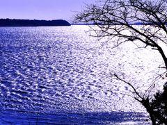 ??? by <b>roro-ji2981</b> ( a Panoramio image )