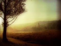 #18 Reggel fenyek, Tinnye, Magyarorszag by <b>hajbakrisz</b> ( a Panoramio image )