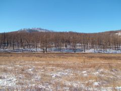 Southern slope of Ondor Tsagaan uul, eastern side. The forest hi by <b>Marmai Ippolito</b> ( a Panoramio image )