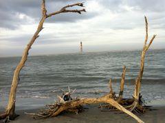 Morris Island Lighthouse 1/1/11 by <b>iphotos</b> ( a Panoramio image )