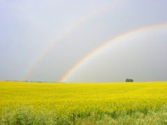 Double Rainbow by <b>Nawitka</b> ( a Panoramio image )
