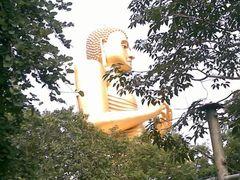 Lord Buddha Statue- Dambulu Viharaya, Dambulla,Sri Lanka by <b>Chandana Gunatilake</b> ( a Panoramio image )