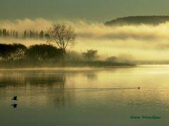 El despertar de la naturaleza by <b>Erwin Woenckhaus</b> ( a Panoramio image )