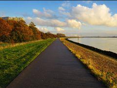 Maassluis - Hiking and biking path by <b>Ria Maat</b> ( a Panoramio image )