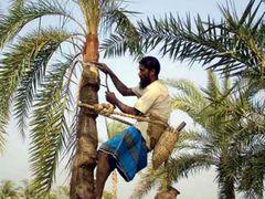 Hard Life !! by <b>Shaikh Aslam Goni</b> ( a Panoramio image )
