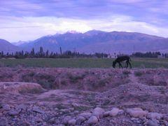 Blick aus Talas auf die Berge by <b>reinischulte</b> ( a Panoramio image )