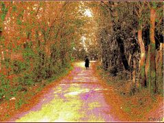 Разходка в  парка (Добрич) by <b>mfilev</b> ( a Panoramio image )