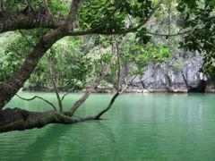 Puerto Princesa Natl. Park, Palawan isl., Philippines by <b>Christian Cabre</b> ( a Panoramio image )