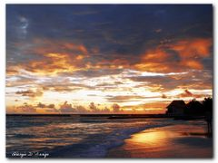 "sunset at the Taj Coral Reef by <b>Giorgio D""Arrigo</b> ( a Panoramio image )"