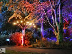 Gardens Magic 2011. by <b>Eva Kaprinay</b> ( a Panoramio image )