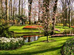 Spring ih the park of Keukenhof by <b>Estike</b> ( a Panoramio image )