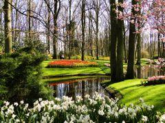 Spring...... by <b>Estike</b> ( a Panoramio image )
