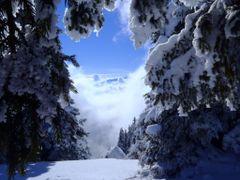 """""""narnia"""" by <b>gigi sarbu</b> ( a Panoramio image )"""