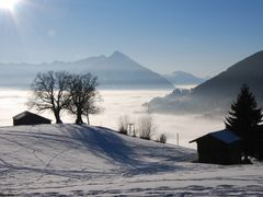 """Just above the fog in Beatenberg-Waldegg (""""Amisbuel"""" ca. 1""""300 m by <b>kurt.fotosuisse</b> ( a Panoramio image )"""